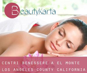 centri benessere a El Monte (Los Angeles County, California)